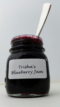 Trisha's Blueberry Jam